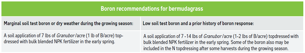 Boron recommendations for bermudagrass