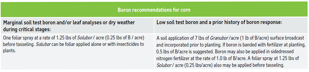 Boron recommendations for corn