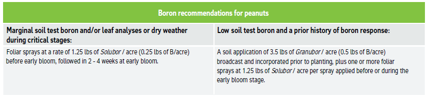 Boron recommendations for peanuts