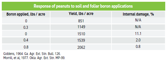 Response of peanuts to soil and foliar boron applications