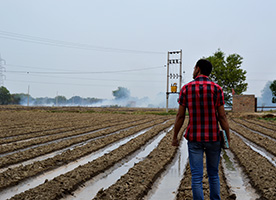 Solving Growing Pains in Indian Agriculture