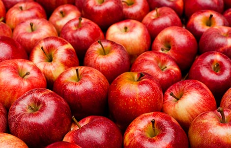 Boron applications for increased apple production
